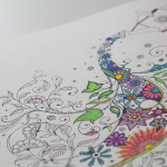 Great Gift Idea: Adult Coloring Books
