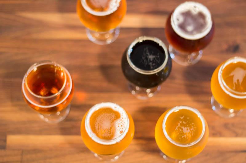 Finback-Brewery-5