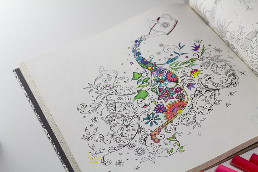 Adult Coloring Book 1