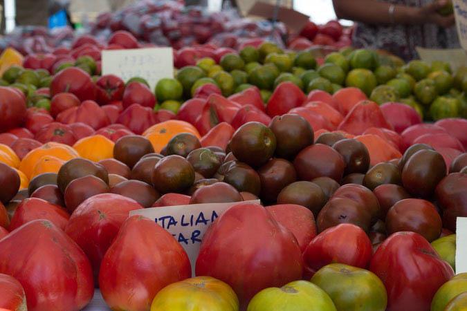 Tomatos Final Resize-2.jpg