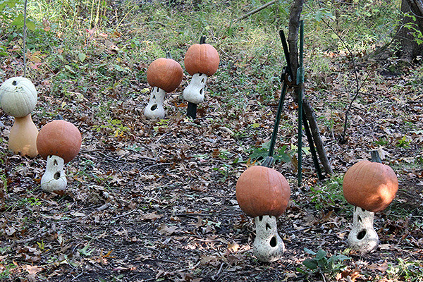 Mushrooms made out of Pumpkins