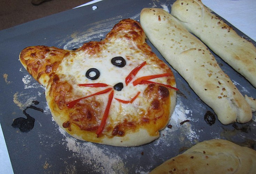 pizza cat face