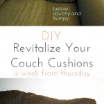 revitalize your couch cushions